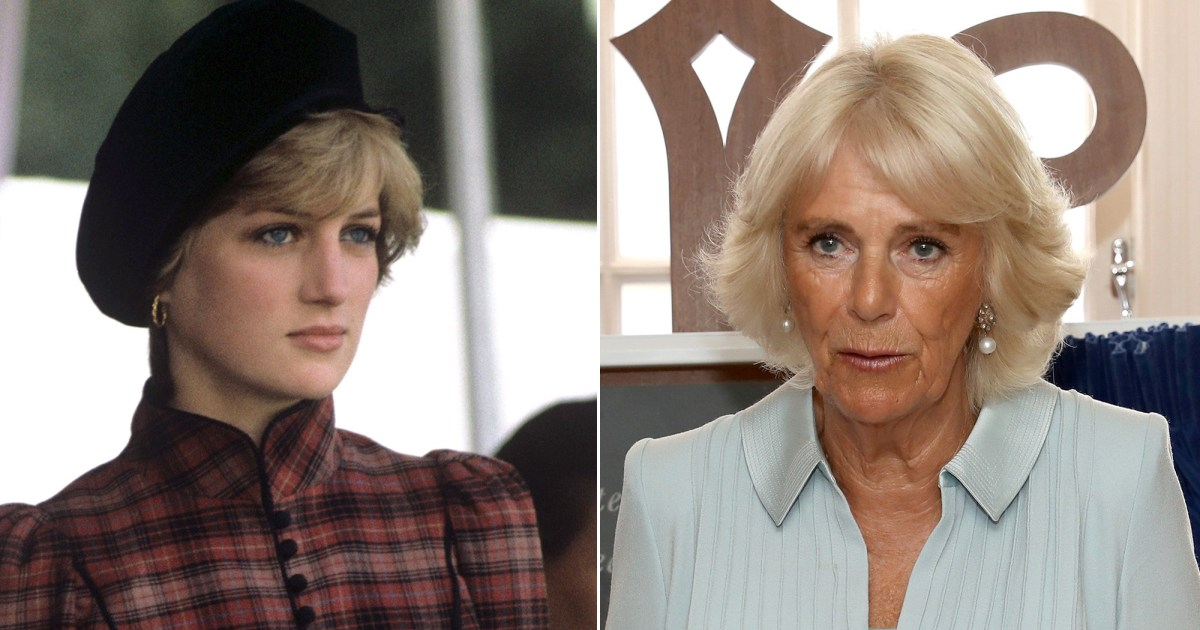 'Fatal Voyage: Diana Case Solved' Reveals Princess Was Jealous of Camilla