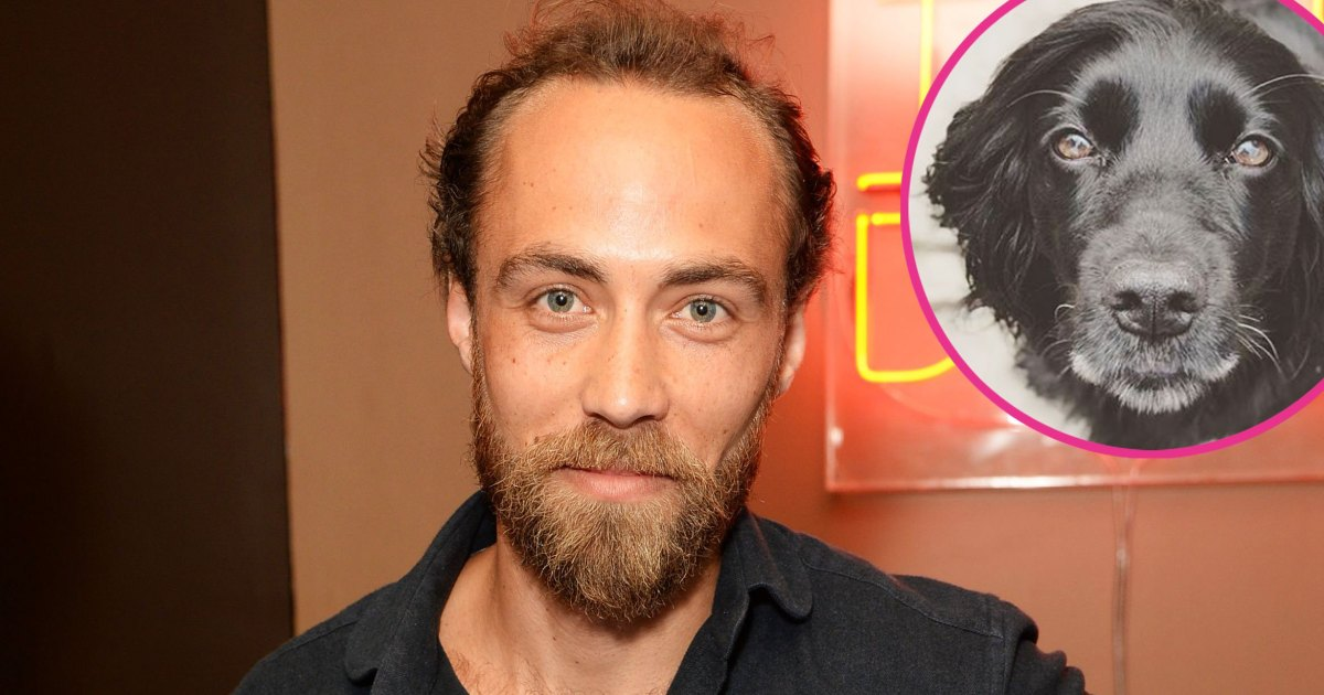 James Middleton Credits Dog for Helping Him Through 'Insufferable Darkness'