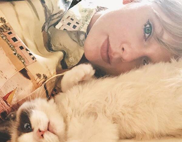 Taylor Swift Is Having the Most Purr-fect National Cat Day