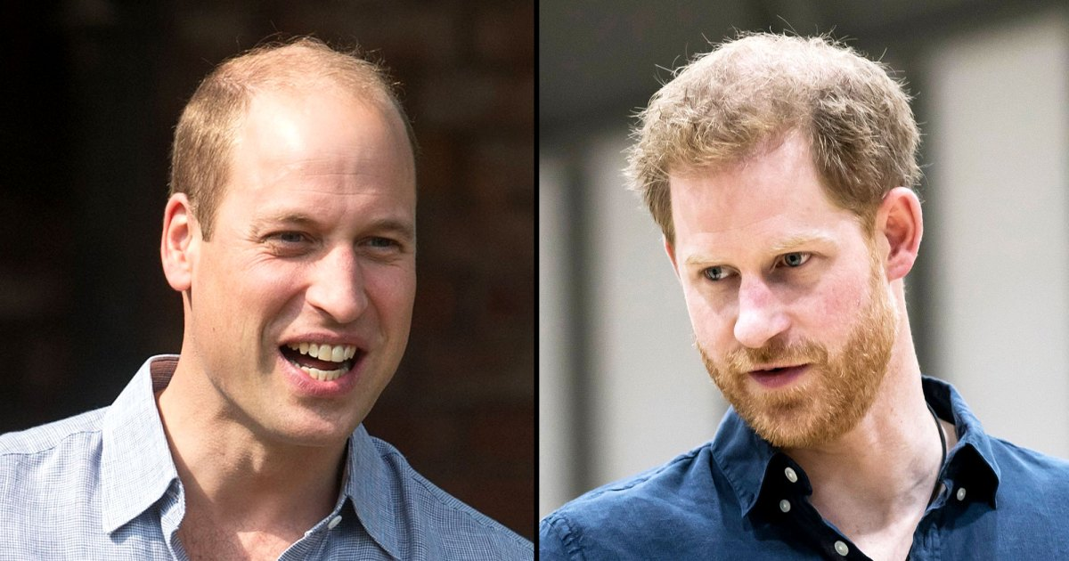 Princes William and Harry 'Need to Put in the Effort' to Rebuild Their Relationship