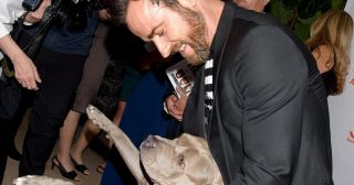 Sidekick! Watch Justin Theroux's Best Moments With His Dog Kuma