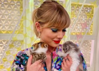 Taylor Swift Promotes Social Distancing And Self Quarantining With Her Cat Meredith As Coronavirus Pandemic Spreads