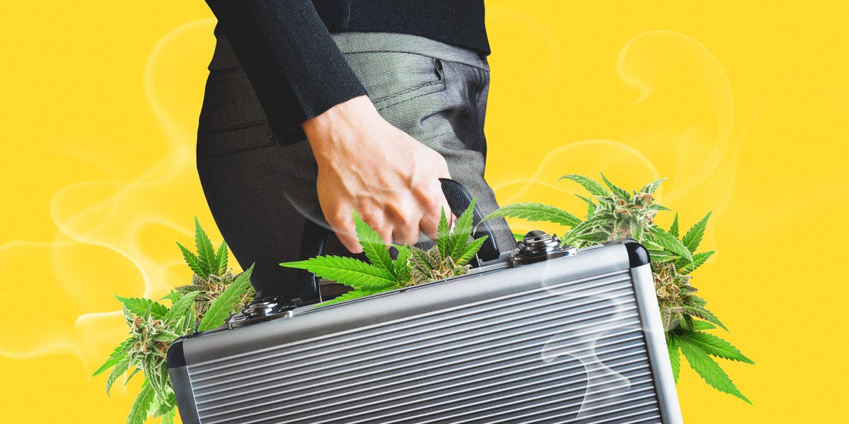Venture investors are piling into red-hot cannabis tech startups, despite the industry's struggles. Here's why mainstream funds are betting on software over pre-rolls.