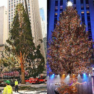 Rockefeller Christmas Tree Finally Gets the Glow Up It Deserves During Lighting Ceremony